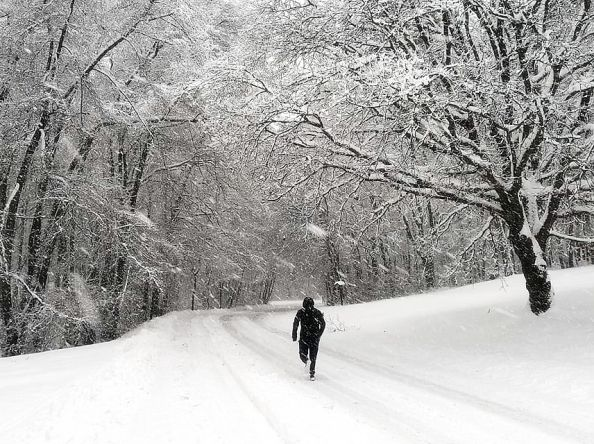 Január 2019. Na Snežienke.