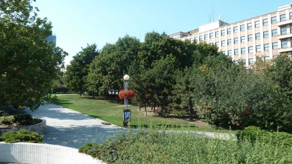 Kollarko-stromy.jpg