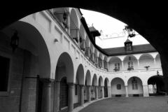 Na renesančnom dvore.