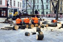koniec-stromov-iii